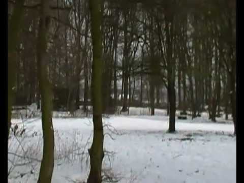 Ice Age - walking through the woods - Eiswandern